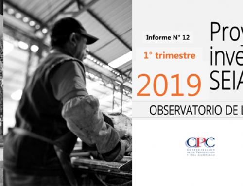 INFORME N°12: PROYECTOS DE INVERSIÓN EN EL SEIA 1° TRIMESTRE 2019