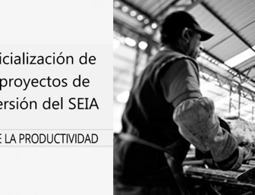 Informe Nº3: Judicialización de los proyectos de inversión del SEIA